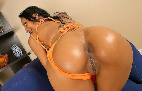 Big Booty Latinas Compilation - vPorncom